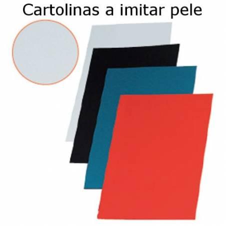 Cartolinas A4 coloridas a imitar pele