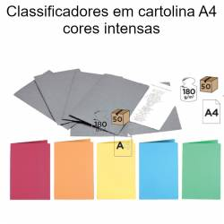 Classificadores em cartolina A4 cores intensas